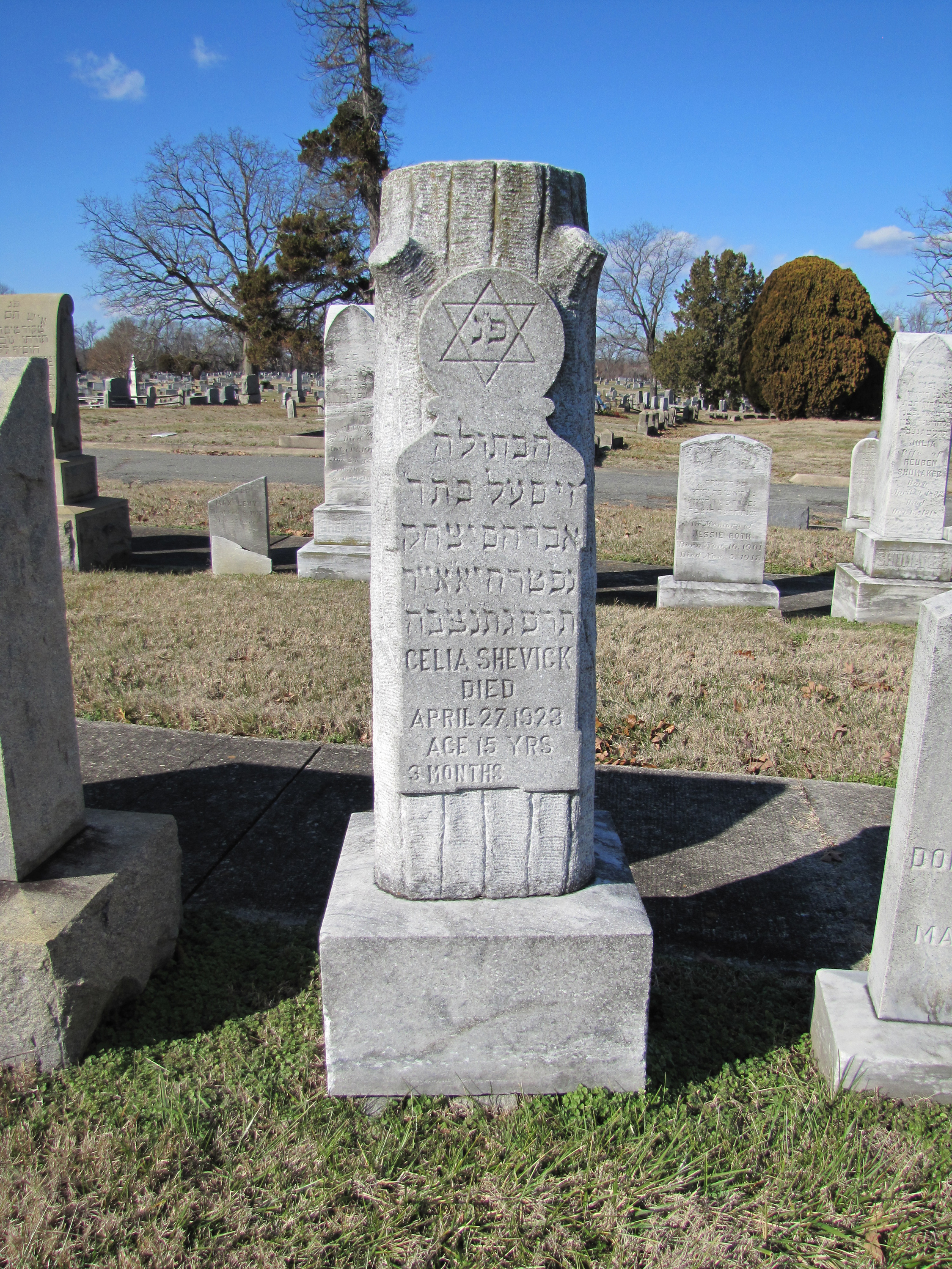 Oakwood Hebrew Cemetery